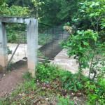 The Burchams crossed this swinging bridge to reach the Tolupan Indian village. (Amy Burcham)