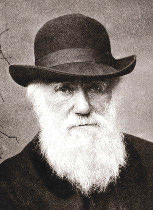 Students celebrate Darwin's birthday